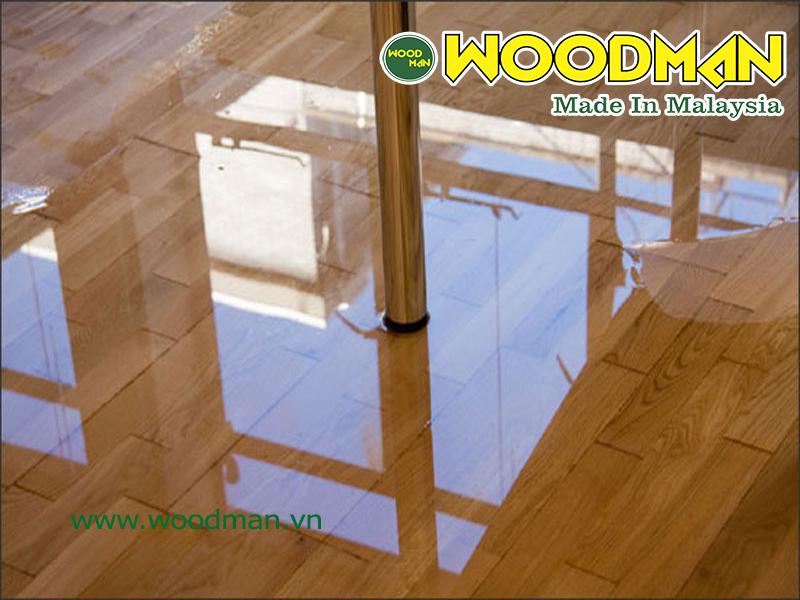 sàn gỗ ngập nước do nước mưa hắt vào nhà