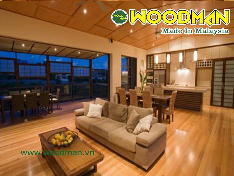 Ôp tường trong nhà bằng gỗ công nghiệp được phân phối bởi Janhome